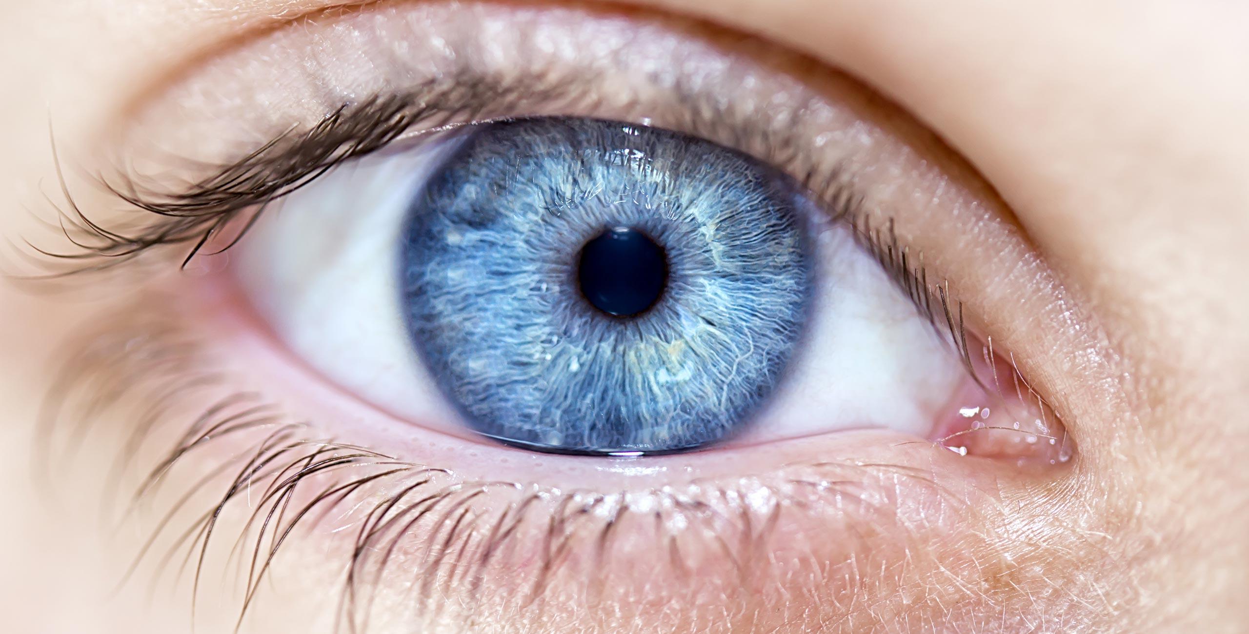 Les différents pathologies de l'œil - Centre ophtalmologique COSS Paris 5